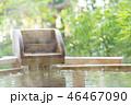 観光 日本 庭の写真 46467090