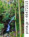 魚返りの滝 巨瀬の滝 滝の写真 46472315