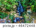 調音の滝 巨瀬の滝 滝の写真 46472448