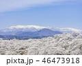 蔵王 一目千本桜 春の写真 46473918
