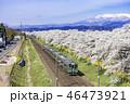 蔵王 一目千本桜 春の写真 46473921