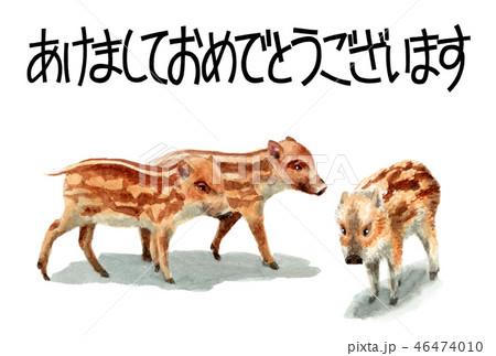 ウリ坊の賀詞入り年賀ハガキ素材 46474010