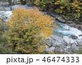 黄葉の黒部峡谷祖母谷 46474333