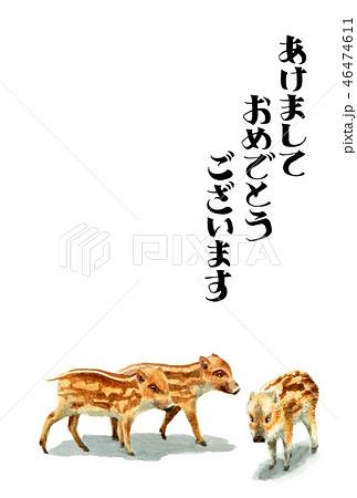 ウリ坊の賀詞入り年賀ハガキ素材 46474611