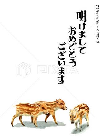 ウリ坊の賀詞入り年賀ハガキ素材 46474612