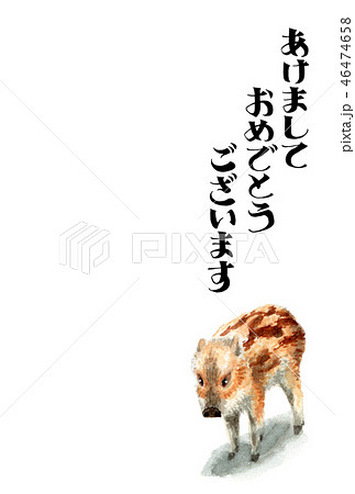ウリ坊の賀詞入り年賀ハガキ素材 46474658
