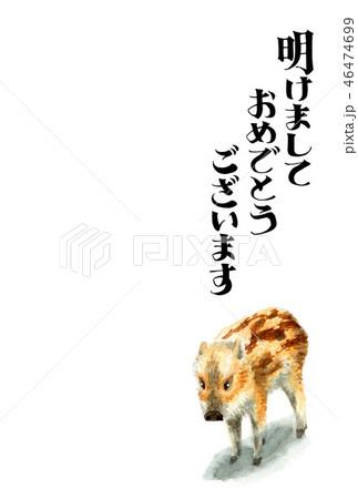 ウリ坊の賀詞入り年賀ハガキ素材 46474699
