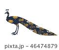 和柄で装飾された孔雀のシルエット 46474879