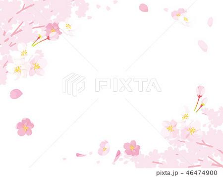 桜 イラスト 46474900