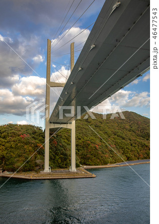 女神大橋 46477543