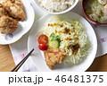 鶏肉 チキン 料理の写真 46481375