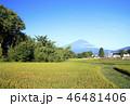 田んぼ 富士山 風景の写真 46481406