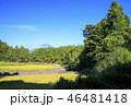 富士山 自然 風景の写真 46481418