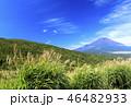パノラマ台 富士山 秋の写真 46482933