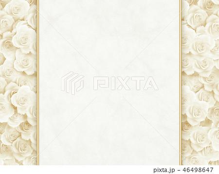 白いバラ 白和紙 46498647