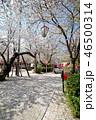 風景 ピクニック 散歩の写真 46500314