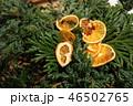 クリスマス 46502765