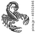 Scorpion Scorpio Zodiac Sign Woodcut Design 46502846