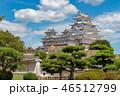姫路城 46512799