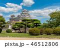 姫路城 46512806