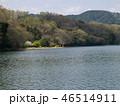 春の一碧湖の湖畔 46514911