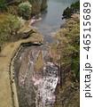 奥野エコーブリッジから見下ろした湖畔 46515689