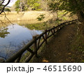 春の一碧湖の湖畔 46515690