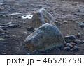 スヴァルティフォス 46520758