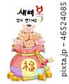 新年 豚 福袋のイラスト 46524085