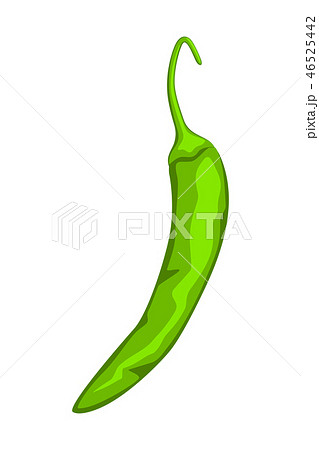 Cartoon green hot pepper. 46525442