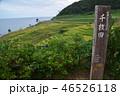 日本 米 山の写真 46526118