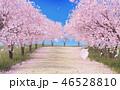 桜並木イメージ 46528810