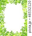 新緑 若葉 葉のイラスト 46532120