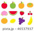 果物 セット ベクターのイラスト 46537937