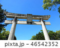 唐津神社 神社 鳥居の写真 46542352