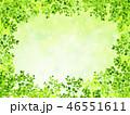 新緑 若葉 葉のイラスト 46551611