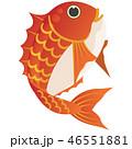鯛 魚類 縁起物のイラスト 46551881