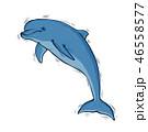 いるか イルカ 海豚のイラスト 46558577
