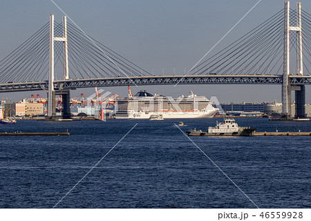 横浜港 46559928