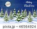 クリスマス 樹木 樹のイラスト 46564924