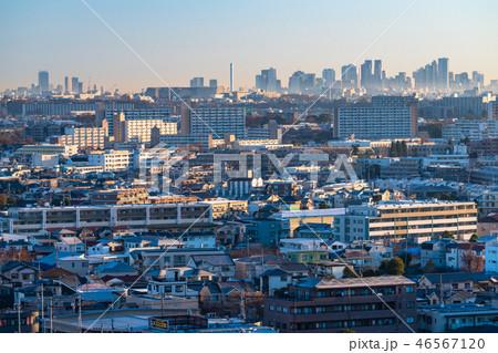 《東京都》東京の夜明け・新しい一日 46567120