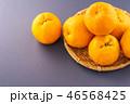 オレンジ色 オレンジ 橙の写真 46568425