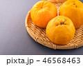 オレンジ色 オレンジ 橙の写真 46568463