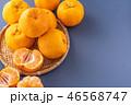 オレンジ色 オレンジ 橙の写真 46568747