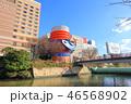 クリスマス 日本 カップルの写真 46568902