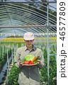 1人 男性 農業の写真 46577809