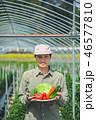 1人 男性 畑の写真 46577810