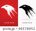鳥 イーグル シンボルマークのイラスト 46578952