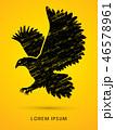 鳥 イーグル シンボルマークのイラスト 46578961