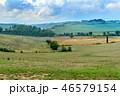 ブドウ畑 ブドウ園 野原の写真 46579154